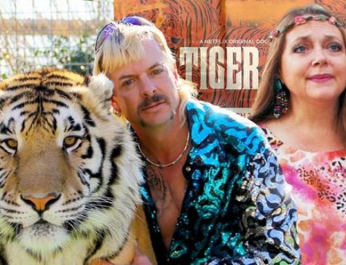 Tiger King 2: 6 Unanswered Questions Everyone Wants To Know