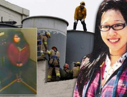 The Mysterious Death of Elisa Lam: 6 Theories Explained